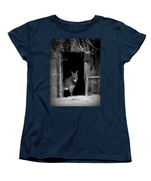 Women's T-Shirt (Standard Cut) featuring the painting Donkey In The Doorway by Michael Dohnalek