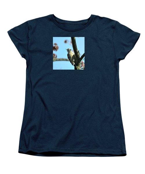 Downy Woodpecker Women's T-Shirt (Standard Cut) by Kathy Eickenberg