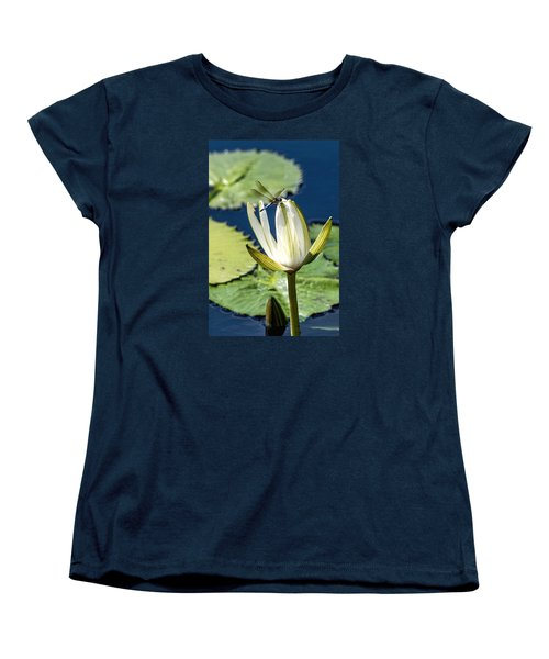 Dragonfly Women's T-Shirt (Standard Cut) by Susi Stroud