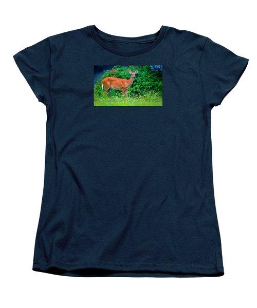 Dusk Deer Women's T-Shirt (Standard Cut) by Brian Stevens