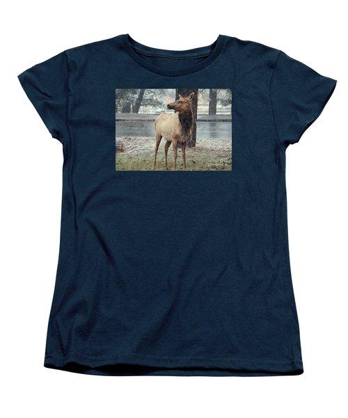 Elk In The Snow Women's T-Shirt (Standard Cut) by Debby Pueschel