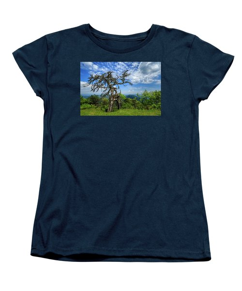 Ent At The Top Of The Hill - Color Women's T-Shirt (Standard Cut) by Joni Eskridge