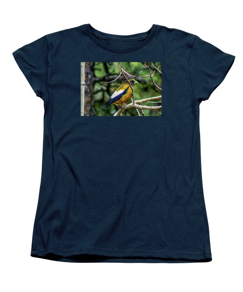 Evening Grosbeak On Aspen Women's T-Shirt (Standard Cut) by Marilyn Burton