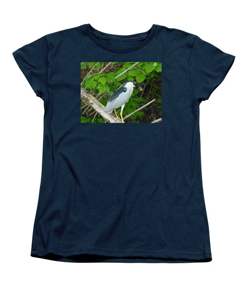 Evening Snack For A Night Heron Women's T-Shirt (Standard Cut) by Donald C Morgan