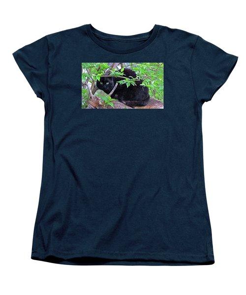 Eye Contact No.2 Women's T-Shirt (Standard Cut) by Sandra Church