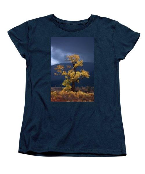 Facing The Storm Women's T-Shirt (Standard Cut) by Edgars Erglis
