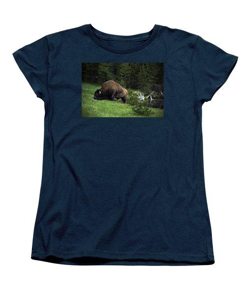 Women's T-Shirt (Standard Cut) featuring the photograph Feeding Buffalo by Jason Moynihan