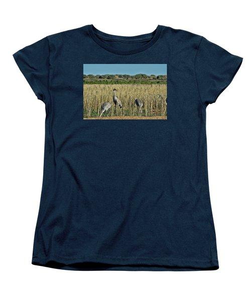 Feeding Greater Sandhill Cranes Women's T-Shirt (Standard Cut) by Daniel Hebard