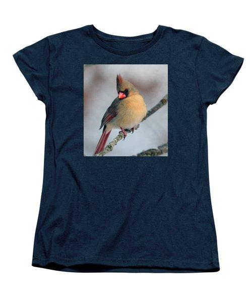 Female Cardinal Women's T-Shirt (Standard Cut) by Diane Giurco