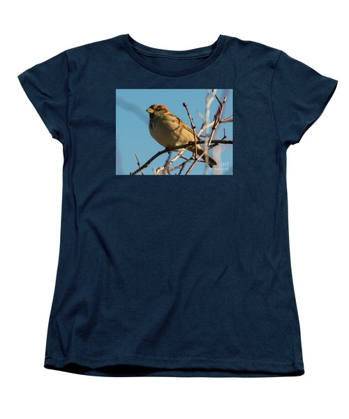 Female House Sparrow Women's T-Shirt (Standard Cut) by Mike Dawson