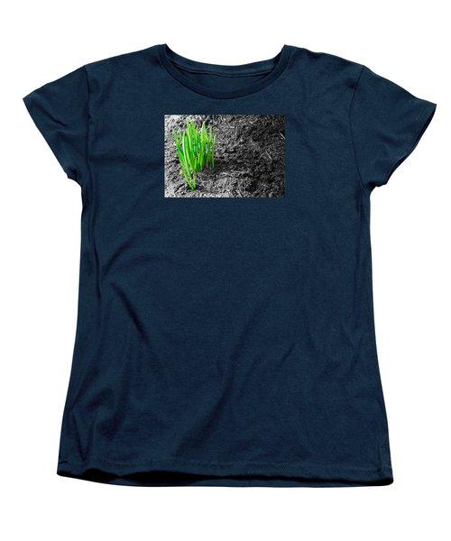 First Green Shoots Of Spring And Dirt Women's T-Shirt (Standard Cut) by John Williams