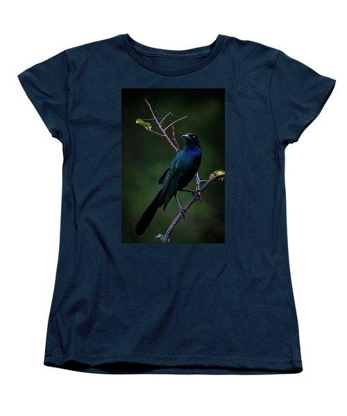 Male Boat-tailed Grackle Women's T-Shirt (Standard Cut) by Cyndy Doty