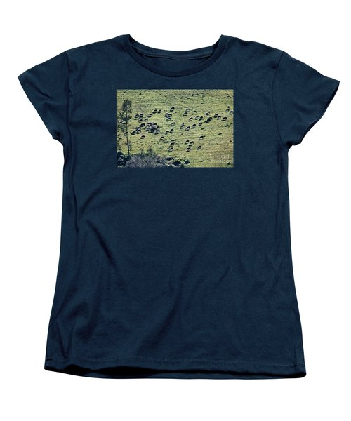 Flock Of Sheep Women's T-Shirt (Standard Cut) by Bruno Spagnolo
