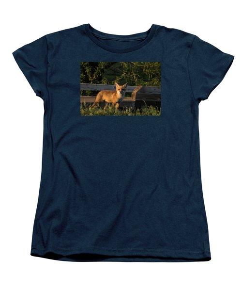 Fox 2 Women's T-Shirt (Standard Cut) by Jay Stockhaus