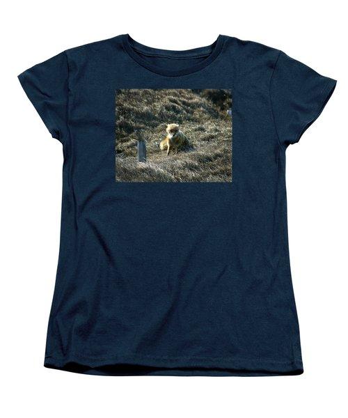 Fox In The Wind Women's T-Shirt (Standard Cut) by Anthony Jones