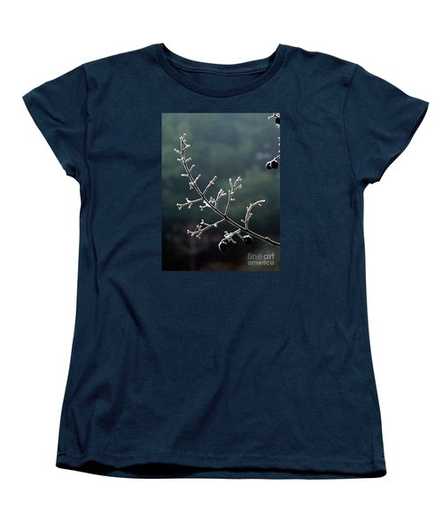 Frosted Women's T-Shirt (Standard Cut) by Christy Ricafrente