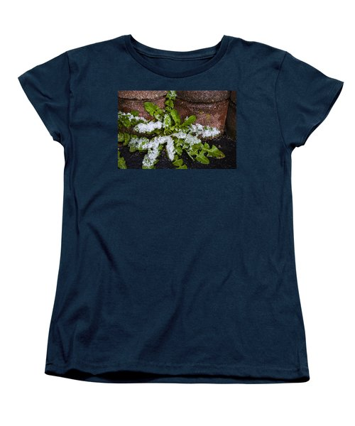 Women's T-Shirt (Standard Cut) featuring the photograph Frosted Dandelion Leaves by Deborah Smolinske