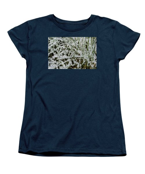 Frosty Grass Women's T-Shirt (Standard Cut) by Deborah Smolinske