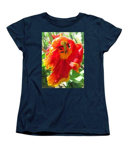 Garden Delight Women's T-Shirt (Standard Cut) by Brooks Garten Hauschild