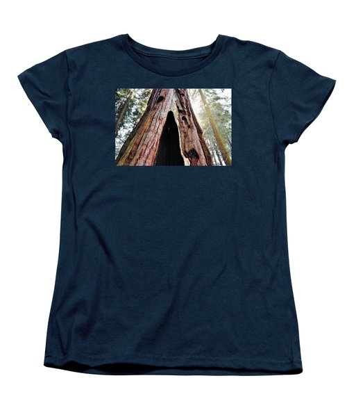 Giant Forest Giant Sequoia Women's T-Shirt (Standard Cut) by Kyle Hanson