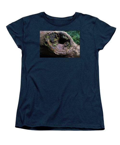 Giant Knot In Tree Women's T-Shirt (Standard Cut) by Scott Lyons