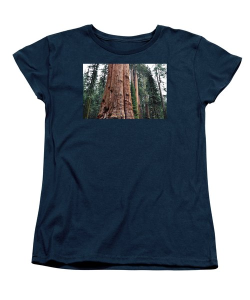 Women's T-Shirt (Standard Cut) featuring the photograph Giant Sequoia II by Kyle Hanson