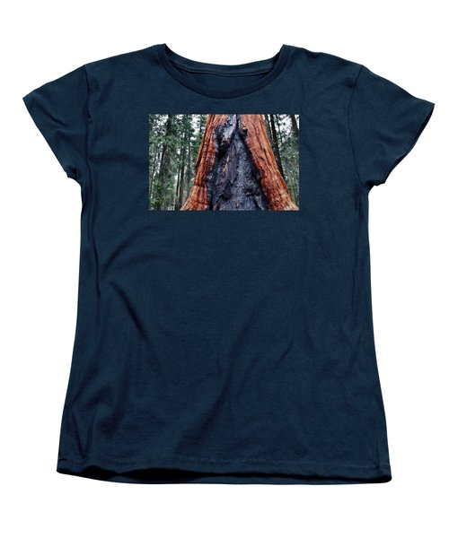 Women's T-Shirt (Standard Cut) featuring the photograph Giant Sequoia by Kyle Hanson