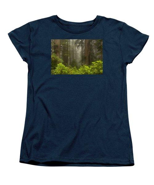 Giants In The Mist Women's T-Shirt (Standard Cut)
