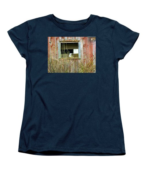 Goat In The Window Women's T-Shirt (Standard Cut) by Donald C Morgan