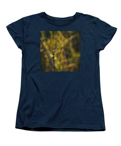 Golden Drangonfly Women's T-Shirt (Standard Cut) by Cesare Bargiggia