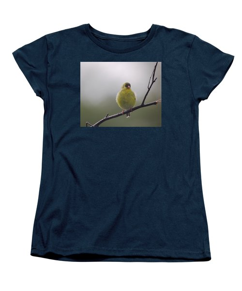 Women's T-Shirt (Standard Cut) featuring the photograph Goldfinch Puffball by Susan Capuano