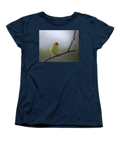 Women's T-Shirt (Standard Cut) featuring the photograph Goldfinch Song by Susan Capuano