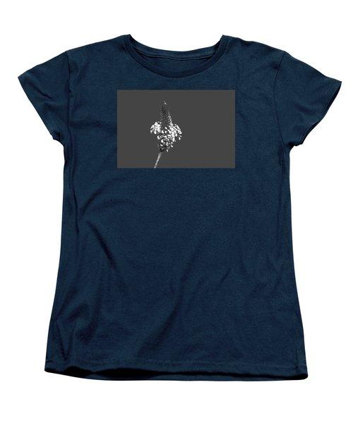 Grey Plaintain Women's T-Shirt (Standard Cut) by Richard Patmore