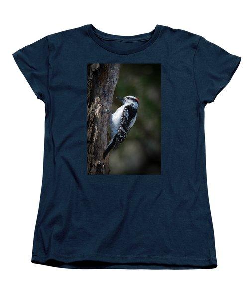 Downy Woodpecker Women's T-Shirt (Standard Cut) by Kenneth Cole