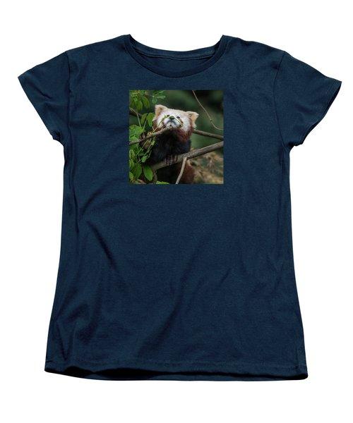 Heavenwards Women's T-Shirt (Standard Cut) by Greg Nyquist