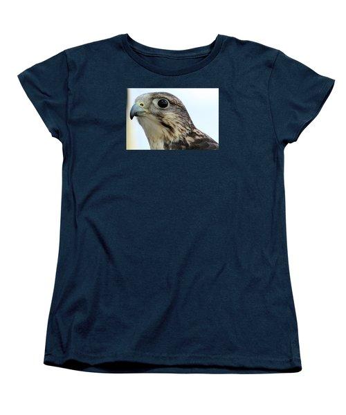 Hello Women's T-Shirt (Standard Cut) by David Stasiak