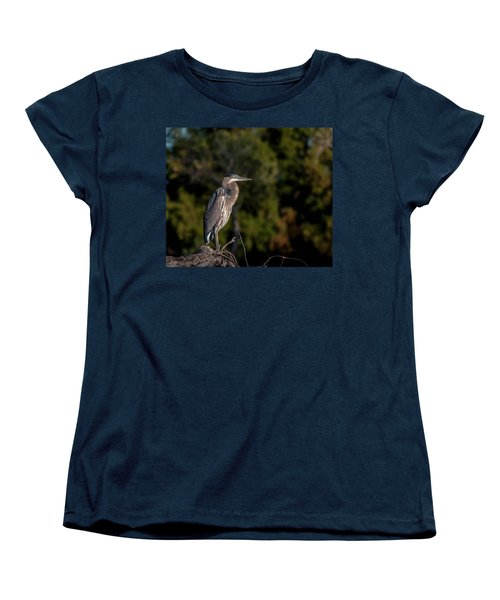 Heron At Sunrise Women's T-Shirt (Standard Cut) by Martina Thompson