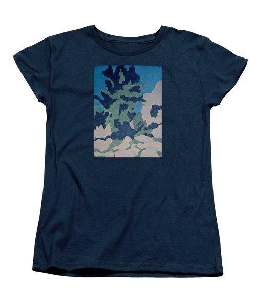 Hidden Valley Abstraction Women's T-Shirt (Standard Cut) by Richard Willson