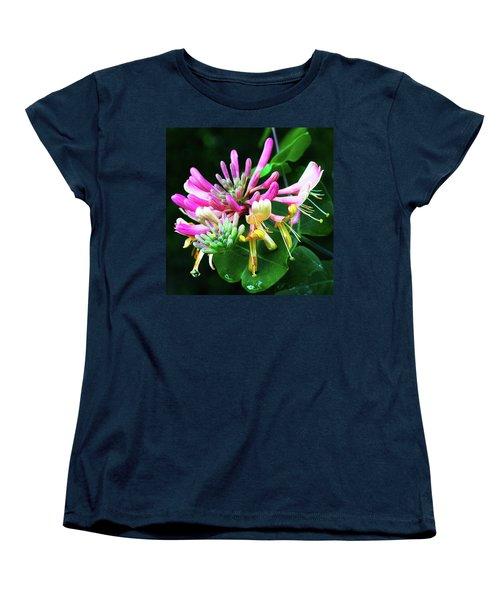 Honeysuckle Bloom Women's T-Shirt (Standard Cut) by Robert FERD Frank