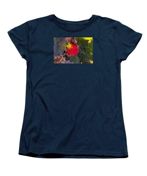Hot Autumn Colors In The Vineyard Women's T-Shirt (Standard Cut) by Arik Baltinester