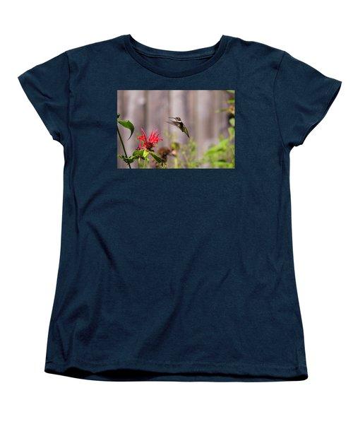 Humming Bird Hovering Women's T-Shirt (Standard Cut) by David Stasiak