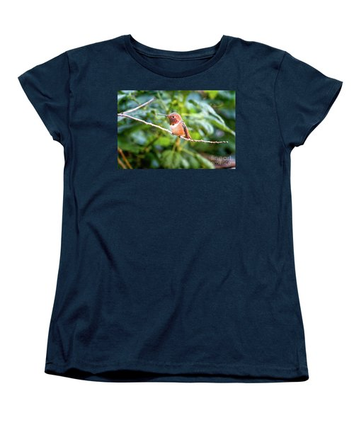 Humming Bird On Stick Women's T-Shirt (Standard Cut) by Stephanie Hayes