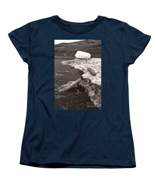 Iceberg Silo Women's T-Shirt (Standard Cut) by Heather Kirk