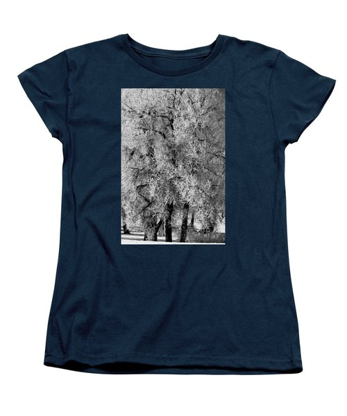 Iced Cottonwoods Women's T-Shirt (Standard Cut) by Colleen Coccia