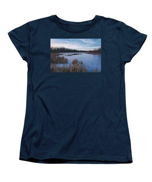 Icy Glazed Wetlands Women's T-Shirt (Standard Cut) by Angelo Marcialis