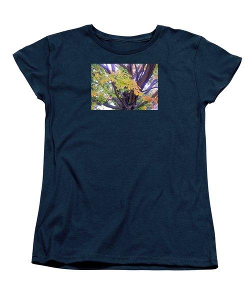 Indian Tree Women's T-Shirt (Standard Cut) by Kristine Nora