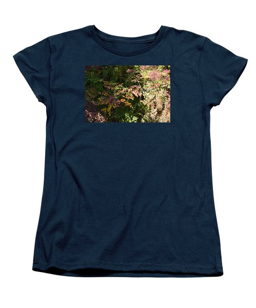 Into The Unknown 2 Women's T-Shirt (Standard Cut)