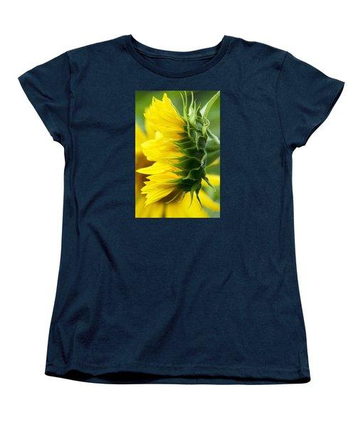It's All About The View Women's T-Shirt (Standard Cut) by Tiffany Erdman
