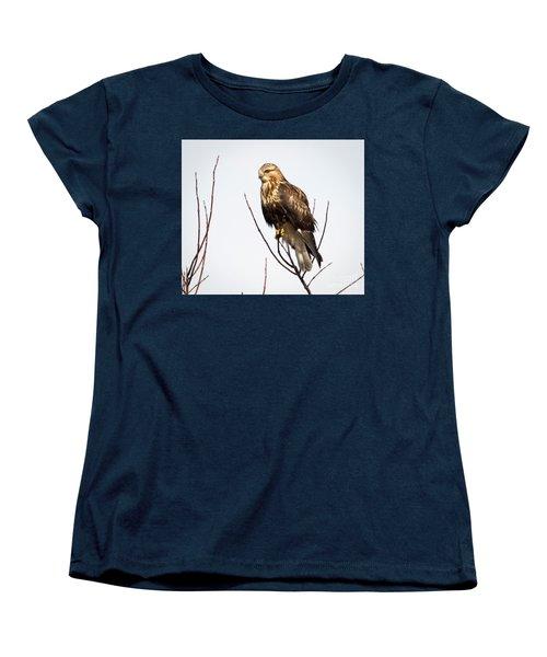 Juvenile Rough-legged Hawk  Women's T-Shirt (Standard Cut) by Ricky L Jones