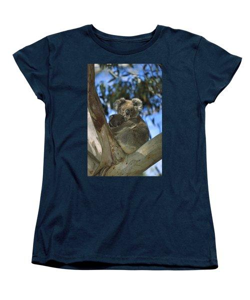 Koala Phascolarctos Cinereus Mother Women's T-Shirt (Standard Cut) by Konrad Wothe